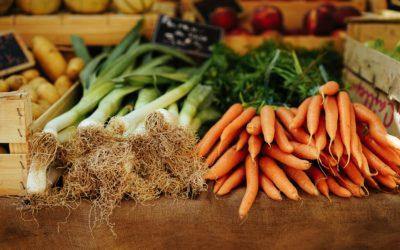 Gaspillage alimentaire, tri des biodéchets : que dit la réglementation ?